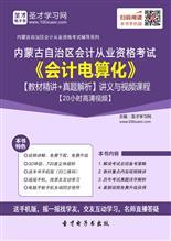 内蒙古自治区会计从业资格考试《会计电算化》【教材精讲+真题解析】讲义与视频课程【20小时高清视频】