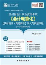 贵州省会计从业资格考试《会计电算化》【教材精讲+真题解析】讲义与视频课程【20小时高清视频】