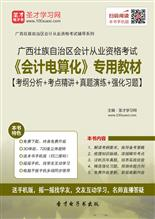 广西壮族自治区会计从业资格考试《会计电算化》专用教材【考纲分析+考点精讲+真题演练+强化习题】