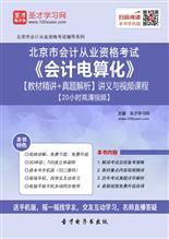 北京市会计从业资格考试《会计电算化》【教材精讲+真题解析】讲义与视频课程【20小时高清视频】